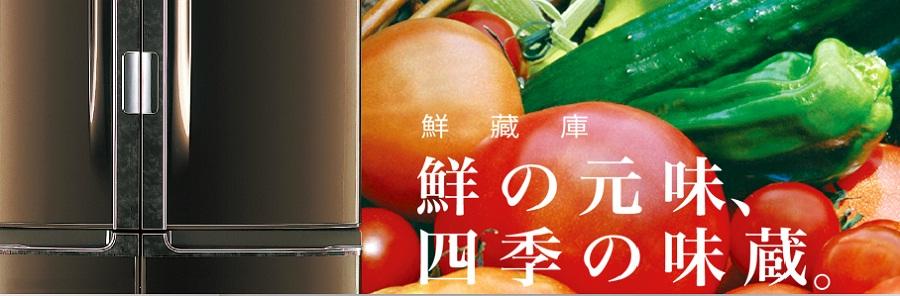 TOSHIBA冰箱