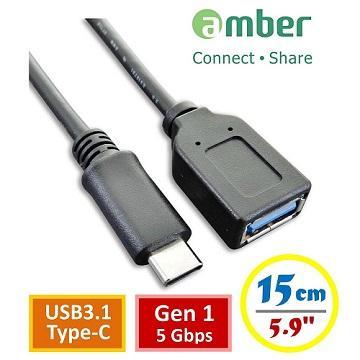 amber USB3.1 type C 公轉 USB 3.1母轉接線