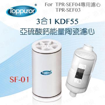 泰浦樂 3合1陶瓷沐浴用濾心