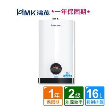 HMK 鴻茂智能恆溫強排瓦斯熱水器16L (H-1601/16公升/不含安裝)