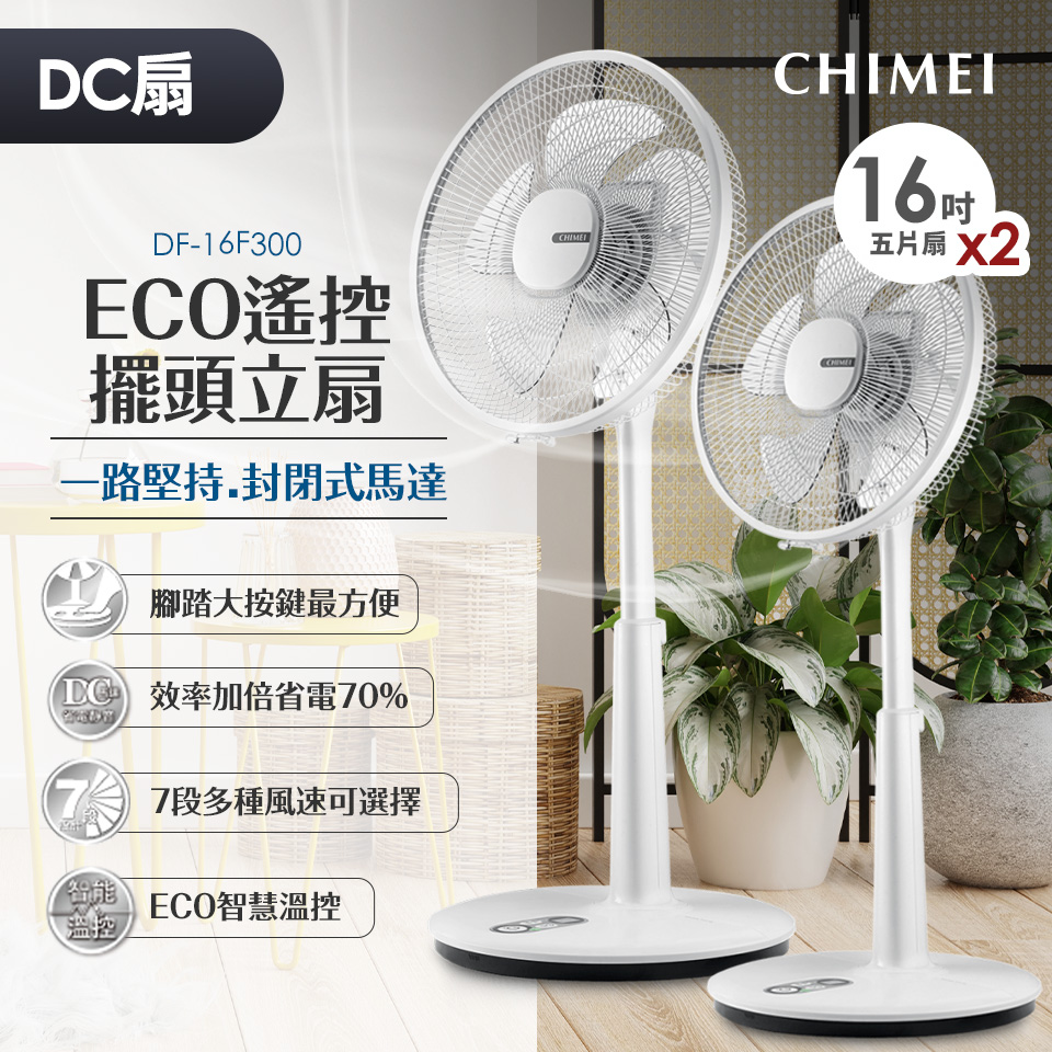 【兩入組】奇美CHIMEI 16吋DC馬達ECO微電腦立扇
