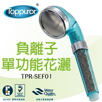 泰浦樂 能量沐浴器