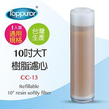 泰浦樂 10吋大T樹脂濾心