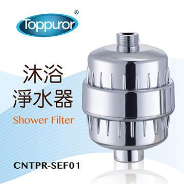 泰浦樂 沐浴淨水器