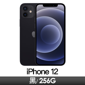 Apple iPhone 12 256GB 黑色 MGJG3TA/A